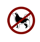 animaux-interdits